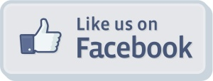 like_us_on_facebook logo